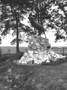 Newfoundland Gueudecourt Memorial