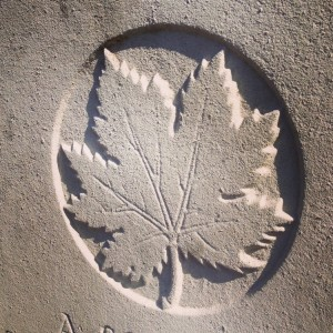 The maple leaf adorns Canadian graves