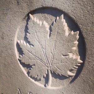 The maple leaf adorns Canadian graves