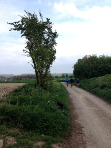Descending the Sunken Lane, Fampoux