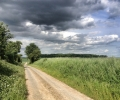 road-from-bazentin-le-petit-towards-high-wood-it-was-on-this-road-that-graves-came-across-dead-germans-when-out-patrolling
