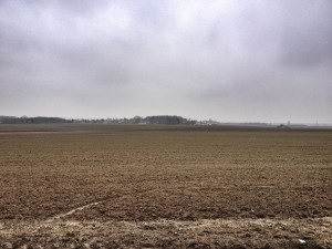 Looking across the rising ground of The Harp. The 9th Rifle Brigade advanced across here on 9 April 1917